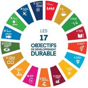 Read more about the article Des territoires pionniers pour l'appropriation de l'Agenda 2030