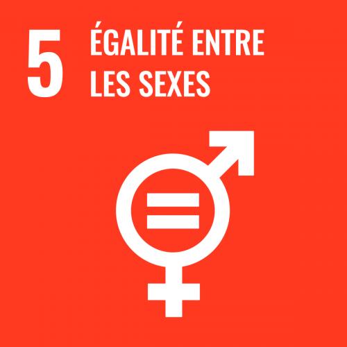 Parvenir à l'égalité des sexes et autonomiser toutes les femmes et les filles