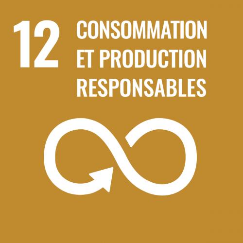 Établir des modes de consommation et de production durables