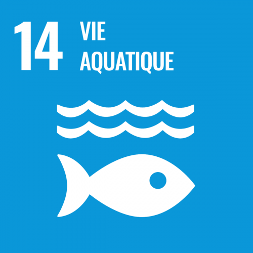 Conserver et exploiter de manière durable les océans, les mers et les ressources marines aux fins du développement durable