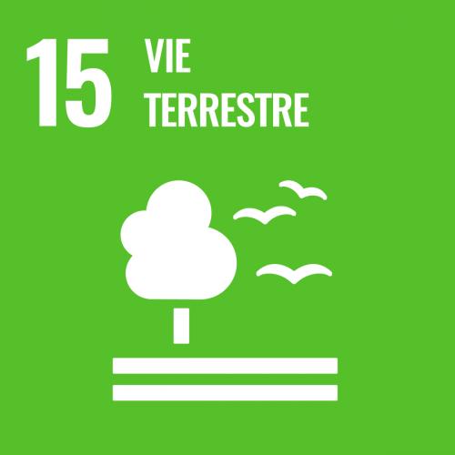 Préserver et restaurer les écosystèmes terrestres, en veillant à les exploiter de façon durable, gérer durablement les forêts, lutter contre la désertification, enrayer et inverser le processus de dégradation des sols et mettre fin à l'appauvrissement de la biodiversité