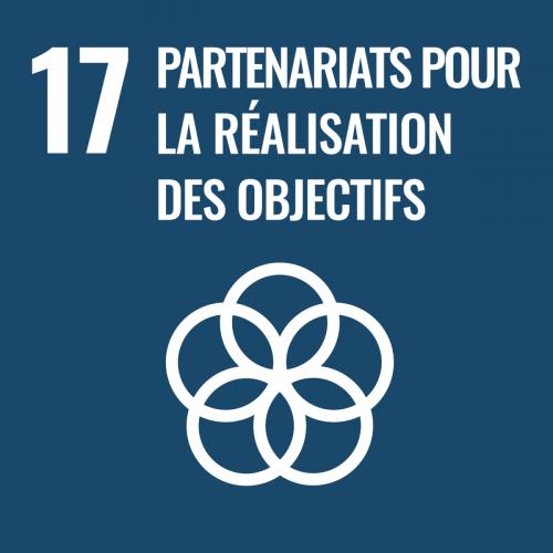 Renforcer les moyens de mettre en œuvre le Partenariat mondial pour le développement et le revitaliser